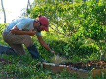 Doug Crouch weeding in the dr