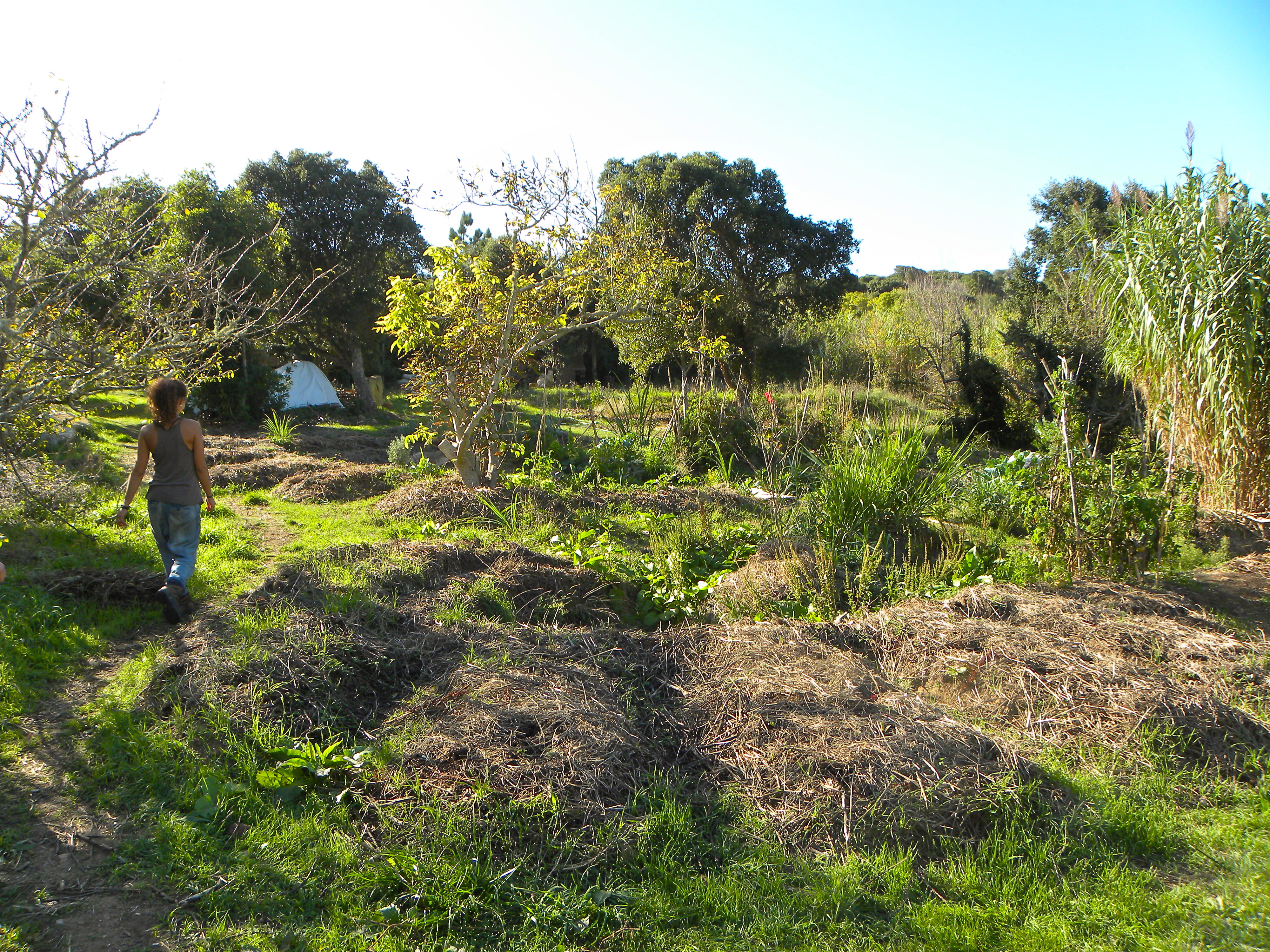 Chapter 9: Earth Working and Earth Resources | A ... on Backyard Permaculture Design id=92638