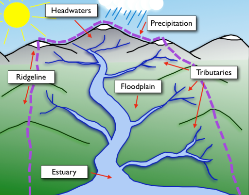 A depiction of a watershed and the important reminder of the source to sink principle