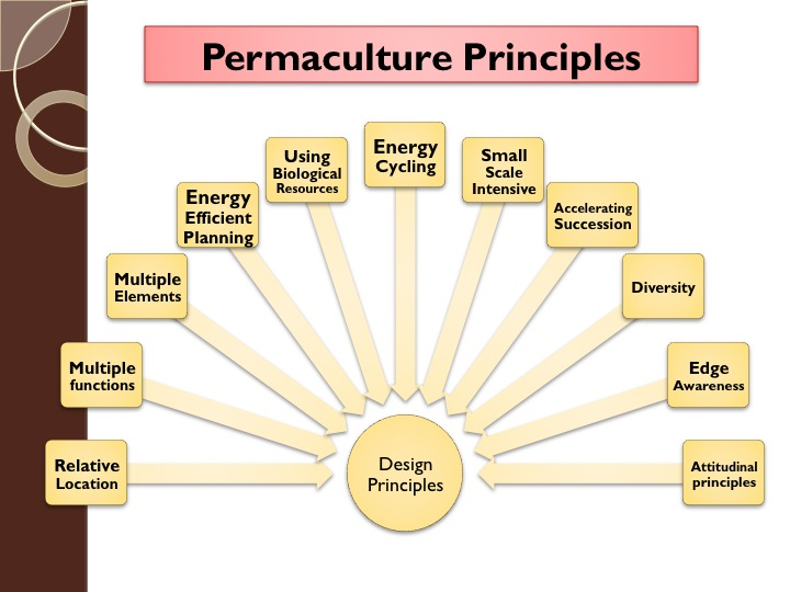 chapter 2 design principles a permaculture design course handbook. Black Bedroom Furniture Sets. Home Design Ideas