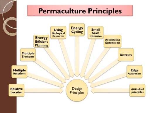 chapter 2 design principles a permaculture design