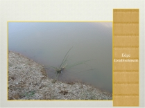 Perma-aquaculture.046