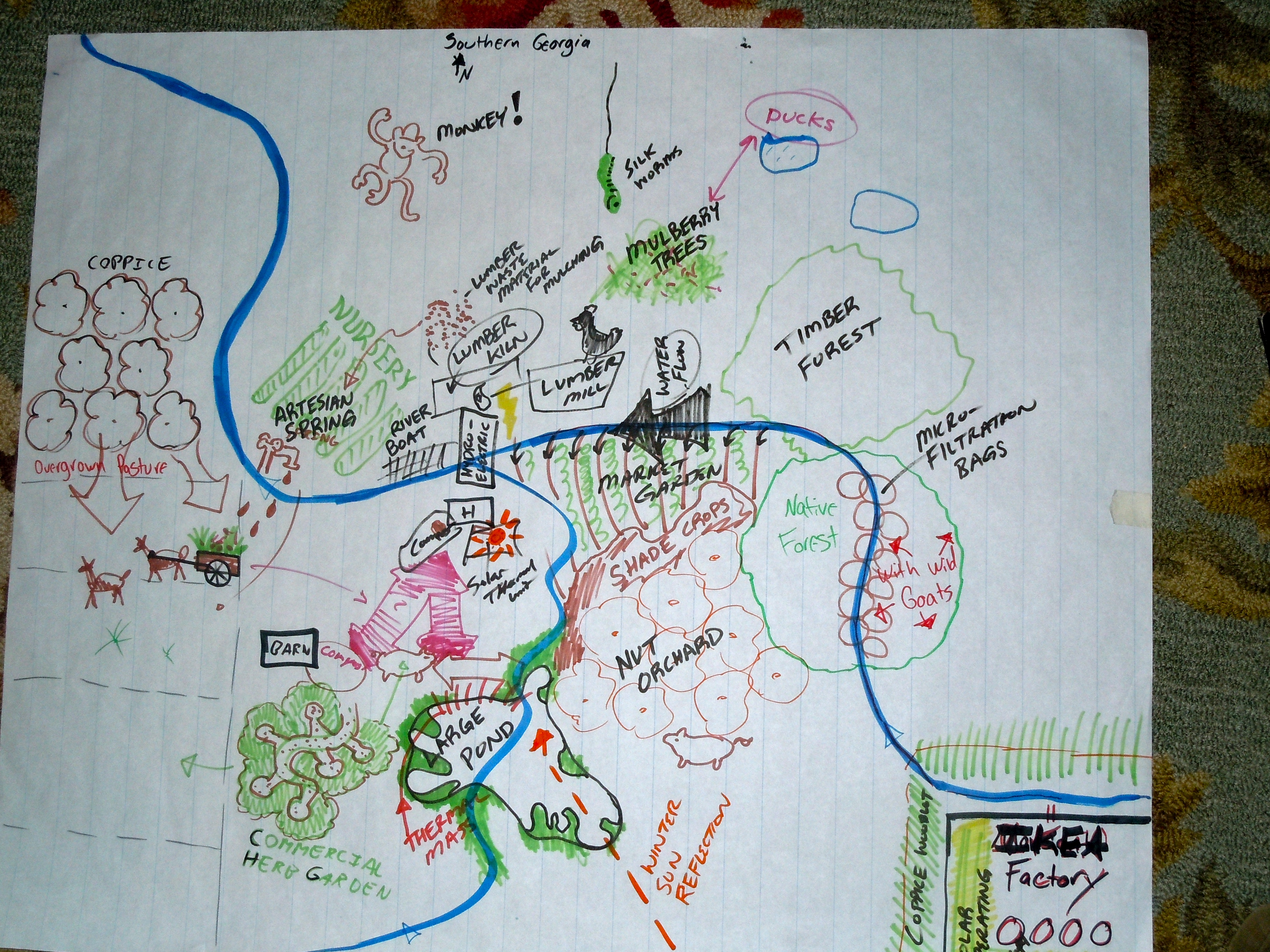 Conceptual Planning Phase | A Permaculture Design Course Handbook