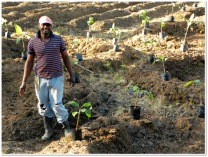 One of our happy planters of banana circles. Jamaica de Dios, Dominican Republic, 2012