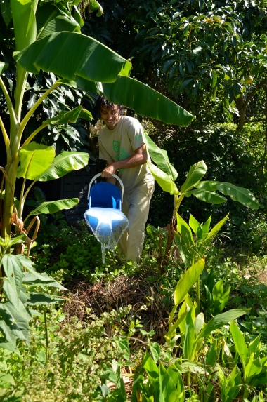 greywater buckets going into the banana circle