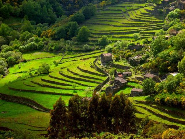 minho region, portugal terraces