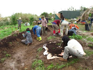 planting food forest and mulching swale digging a escola de terra pdc permaculture portugal