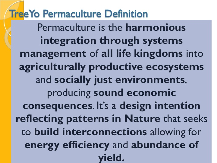 treeyo permaculture definition a permaculture design course handbook