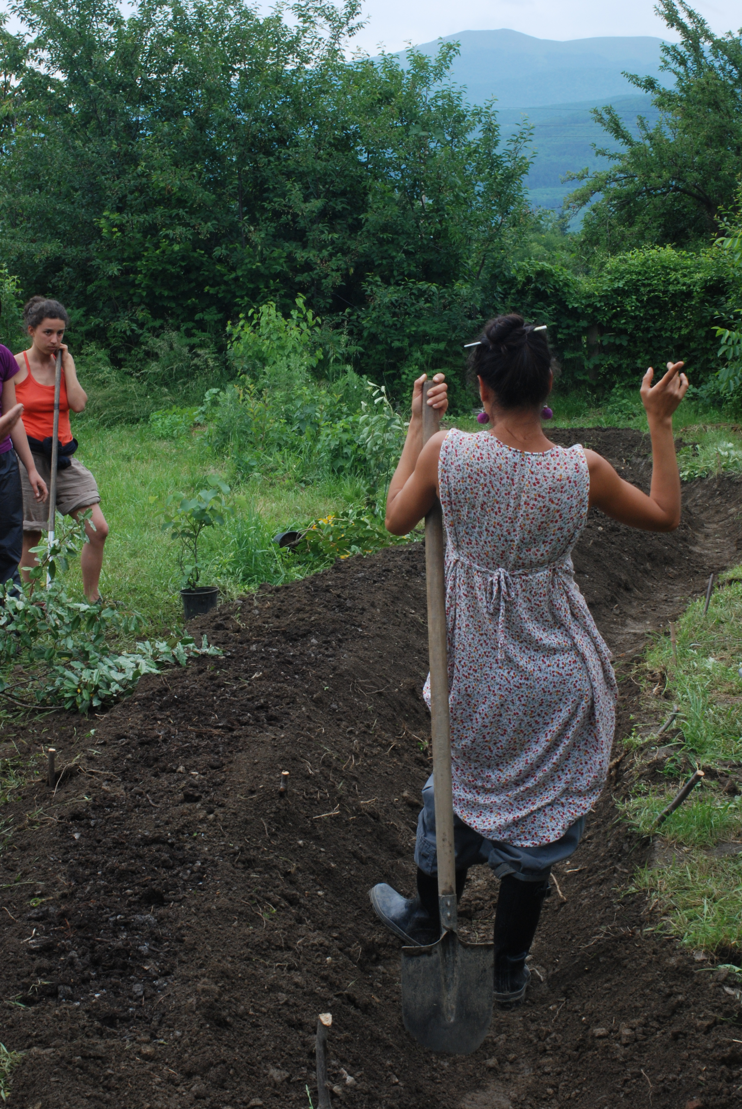 Permaculture Swales