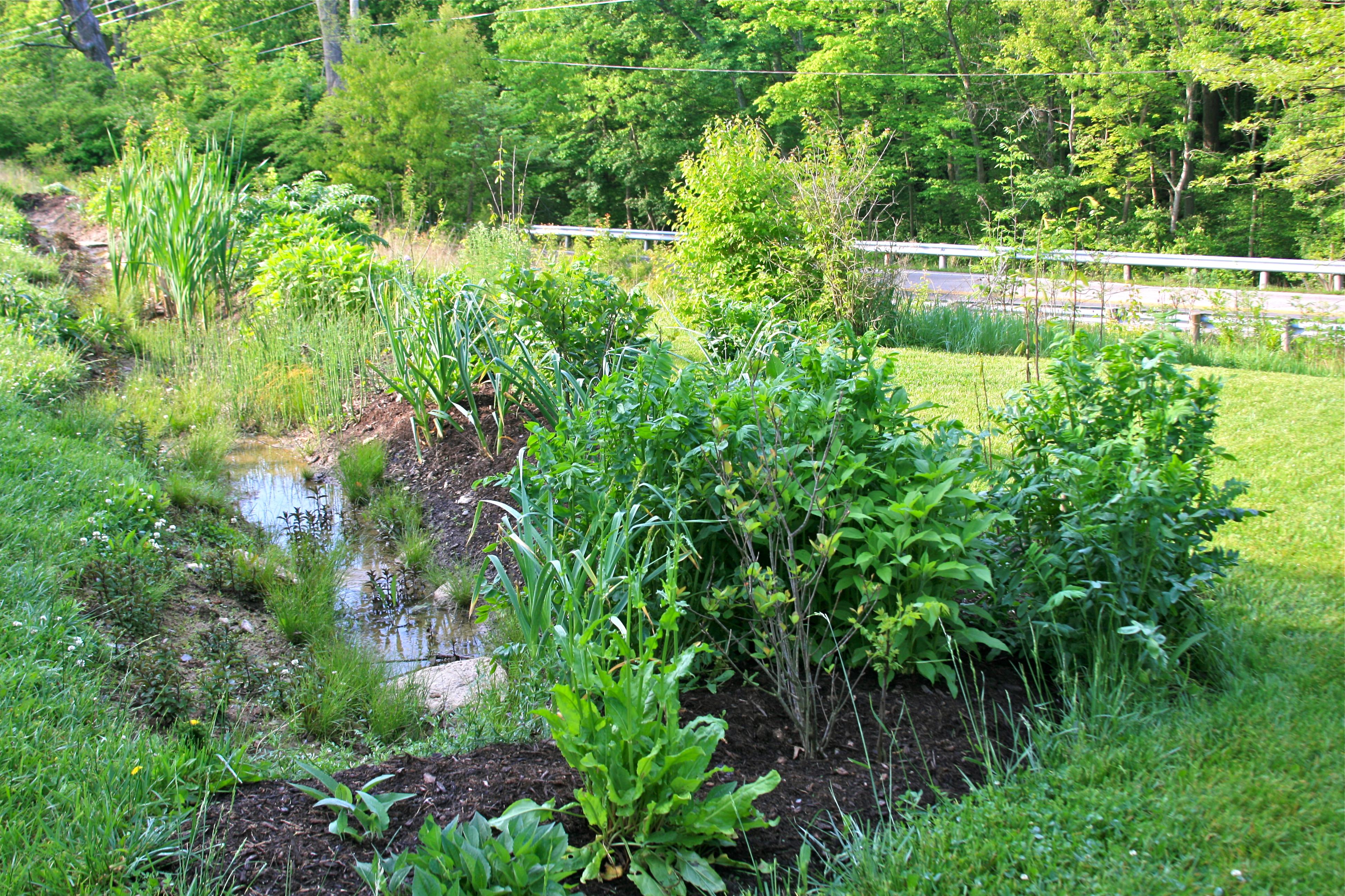Above Ground Garden Drainage