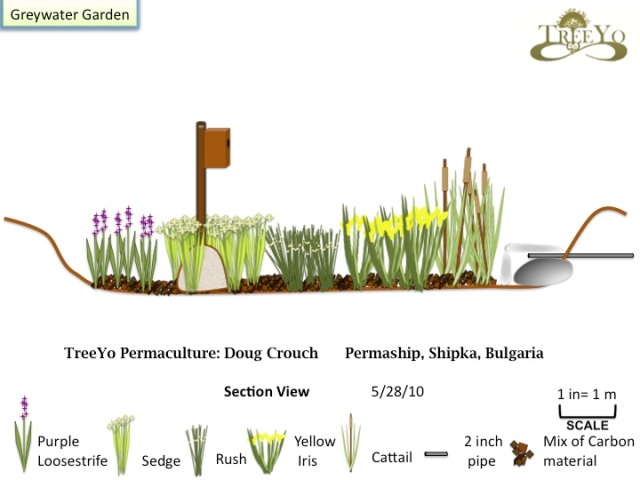 Greywater Permaculture