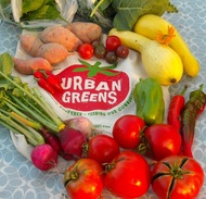 Urban Greens logo