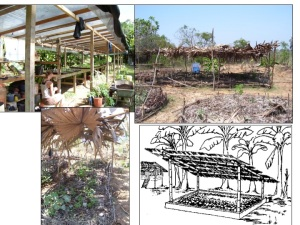 Permaculture Structures for microclimate