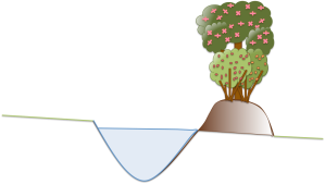 Permaculture Swale