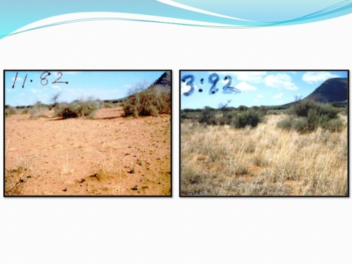 Drylands comparison with HM