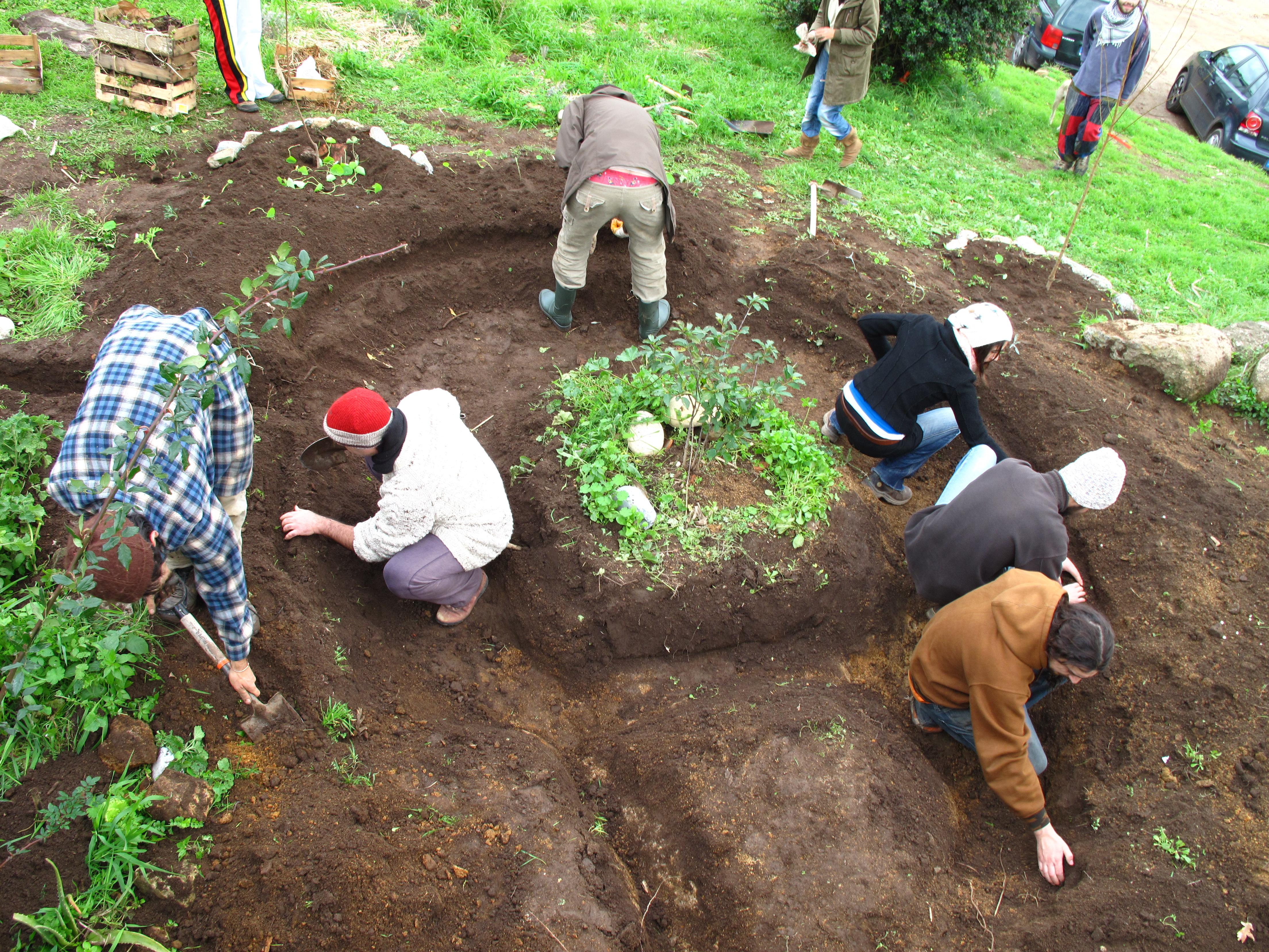 rain garden digging at escola de terra pdc permaculture portugal  