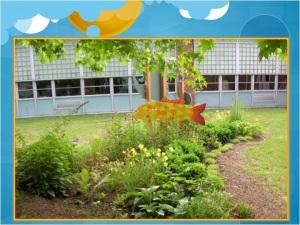 rain garden cincinnati