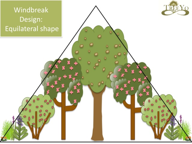 windbreak design shape