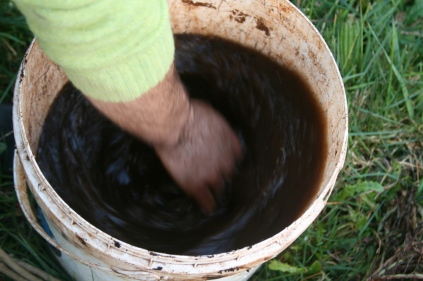 Biodynamic stir of compost extract