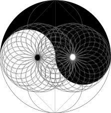 yin yang torus