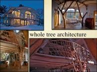 natural building 1.045