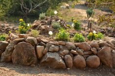terra alta herb spiral= recently built and planted