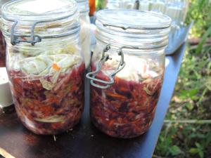 gringo kimchi