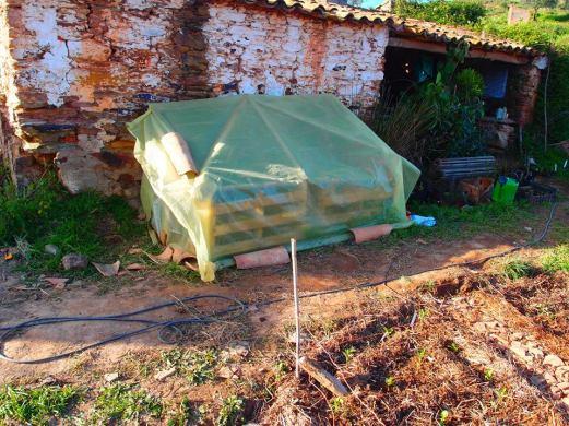 Pallet Cold Frame, Alentejo, Portugal