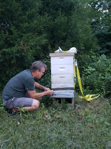 Gil, our friend at Treasure Lake, preparing to move one of his hives to the lake, KY 2018